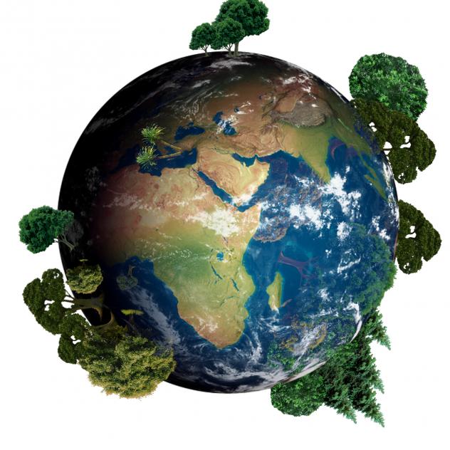 •Öka medvetenheten och kunskapen hos våra anställda om kortsiktiga och långsiktiga miljöeffekter i vår verksamhet.